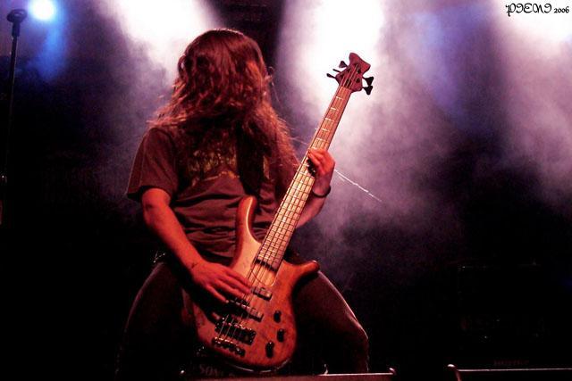 DIESELHUMM2006
